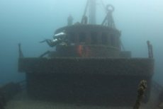Diver Exploring the Bow of the Daniel J. Morell in Lake Huron